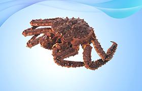 帝皇蟹(斯加蟹)